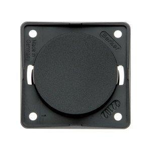 Berker blank plate 9-4516-25-XX